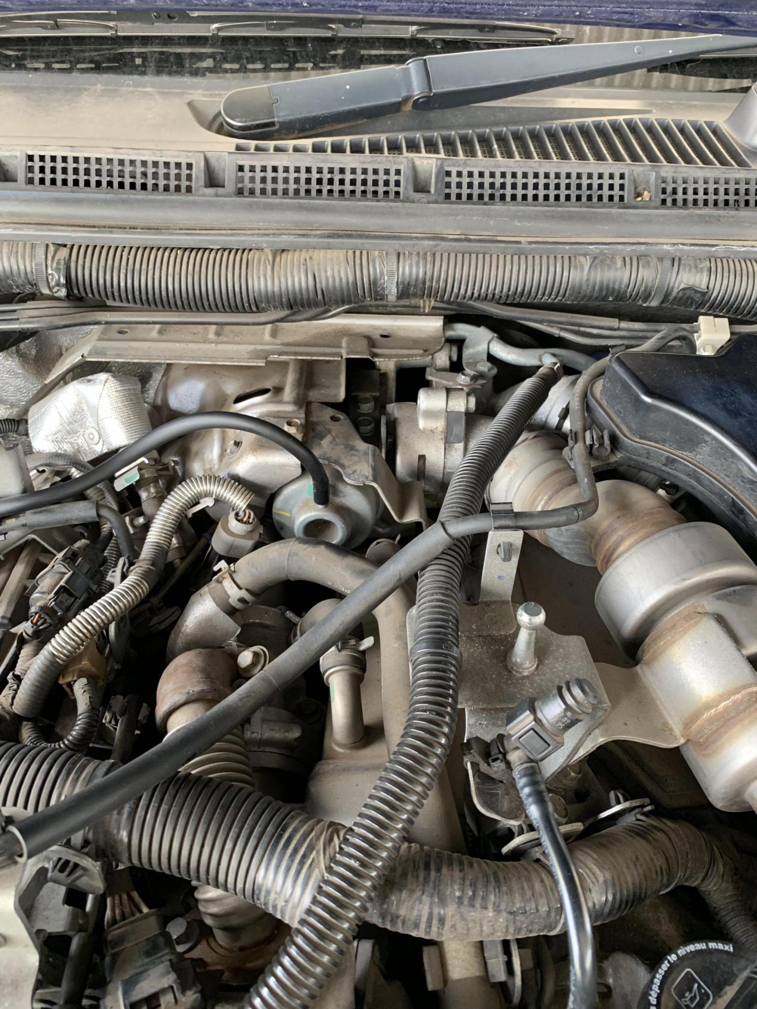 Engine Bay V6 Nissan Navara Net